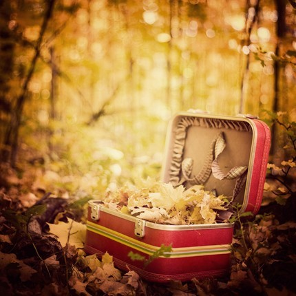 Autumn-box